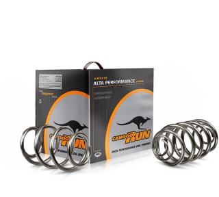 Kit molas esportivas CangooRun Peugeot 206 Hatch/SW 1.0 | 1.4 | DUB Store