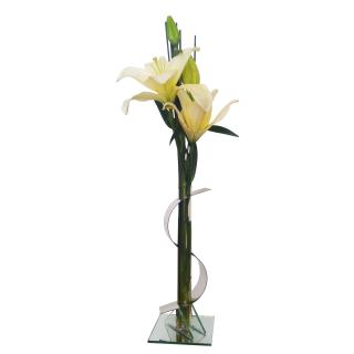 Arranjo Sorte na Vida | Florisbella Floricultura