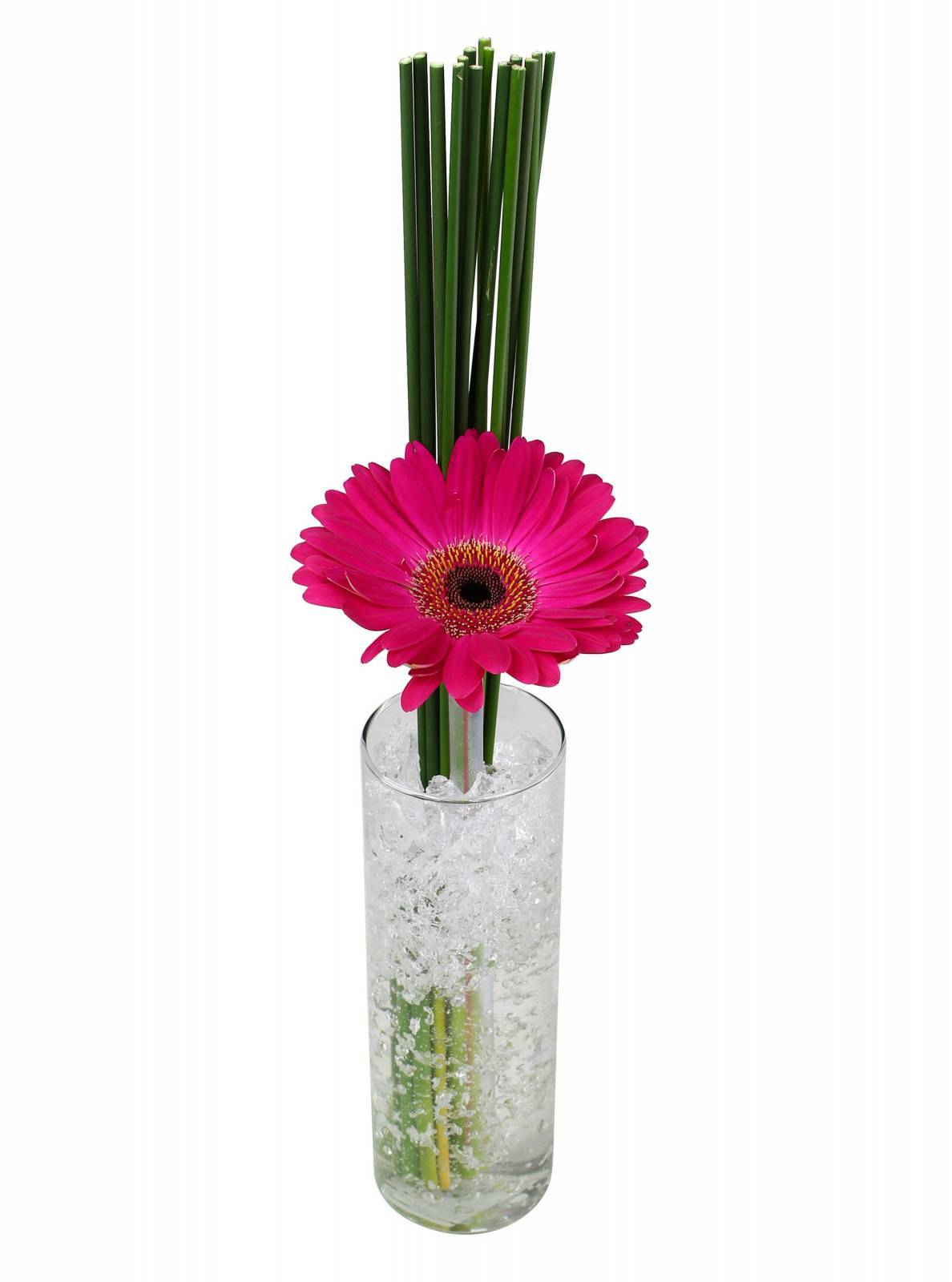 Arranjo Clean de Gerbera