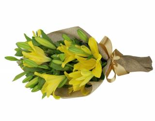 Lírios da Alegria | Florisbella Floricultura