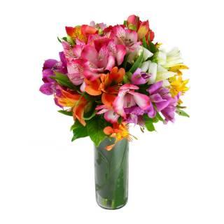 Lembrança | Florisbella Floricultura