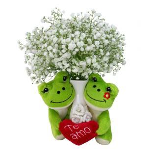 Meu Primeiro Amor Verde | Florisbella Floricultura