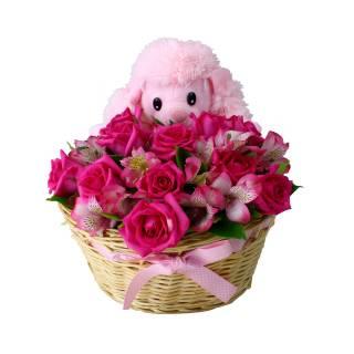 Sedução Pink | Florisbella Floricultura