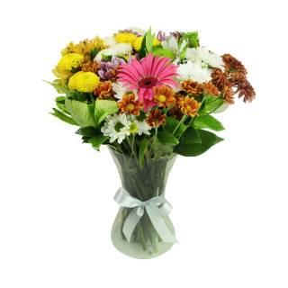 Buquê Flores do Campo no Vaso | Florisbella Floricultura