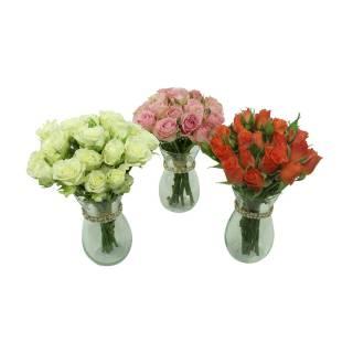 Charme de Mini Rosa c/ 3 | Florisbella Floricultura