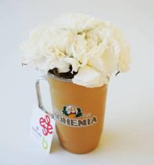 Pai Cervejeiro Bohemia