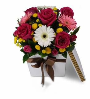 Caixa de Pandora | Florisbella Floricultura