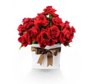 Surpresa de Rosas | Florisbella Floricultura