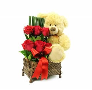 Cesta Teddy Amoroso | Florisbella Floricultura