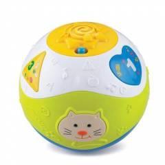 Bola de Atividades Aprender e Brincar - Zoop Toys ZP00052   Noy Brinquedos
