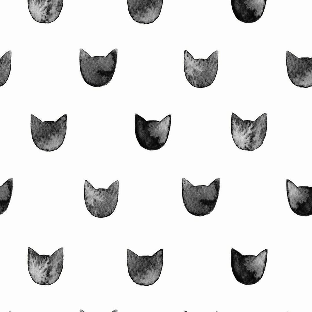 Papel de Parede Adesivo Black Cats