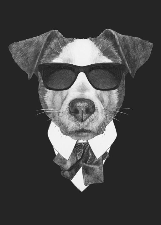 Quadro Cachorro Executivo