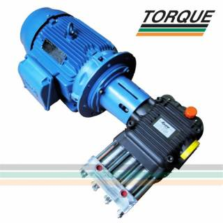 Grupo Motobomba - Motor 25 CV + Bomba HPP CH 25/500 | 25l./min. | 500 bar | 7.250 libras